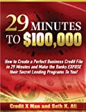 img - for 29 Minutes to $100,000: How To Create A Perfect Business Credit Profile in 29 minutes and Make the Banks EXPOSE Their Secret Lending Programs to YOU! book / textbook / text book