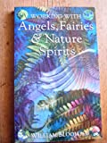 img - for WORKING WITH ANGELS, FAIRIES & NATURE SPIRITS book / textbook / text book
