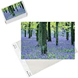 Photo Jigsaw Puzzle of Bluebells and Beech woodland, Buckinghamshire, UK, April from David Tipling