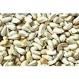Kusuma Oil - Kardi Oil - Kusum Oil - Cold Pressed - For Beauty & Health - 100 Ml - Pmw