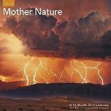 2018 Mother Nature Wall Calendar (Mead)