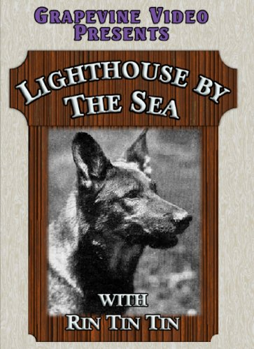Lighthouse By the Sea [DVD] [1924] [Region 1] [US Import] [NTSC]