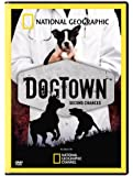 Dog Town:Second Chances