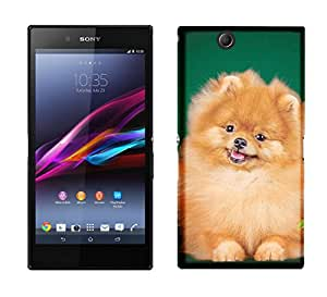 WOW Printed Designer Mobile Case Back Cover For Sony Xperia Z Ultra