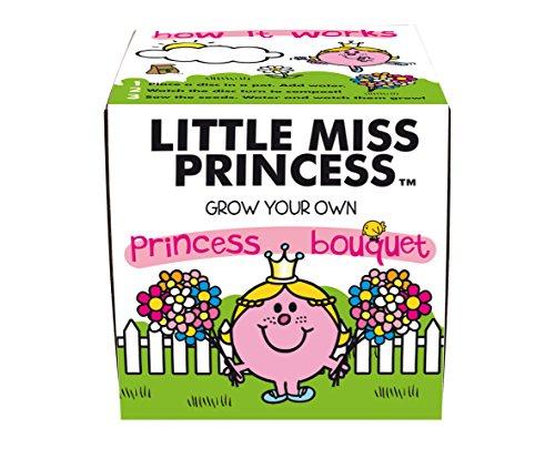 mr-men-semillas-para-flores-color-multicolor