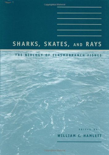 Sharks, Skates, and Rays: The Biology of Elasmobranch Fishes (The Biology Of Sharks And Rays compare prices)