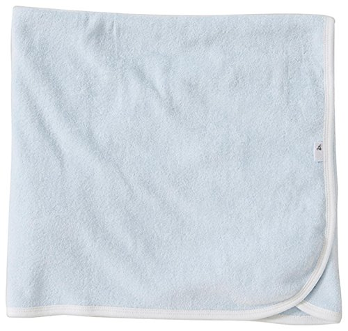 Burt's Bees Baby Single Ply Hooded Toddler Towel - Sky
