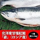 北洋産甘塩紅鮭「姿」(ロシア産) 1尾(約2.1kg)