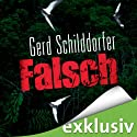 Falsch Audiobook by Gerd Schilddorfer Narrated by Wolfgang Wagner