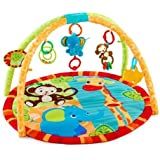 fisher price playtime bouncer u zoo infant bouncers and rockers baby