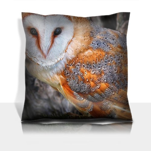Nature Animal Owl Birds Tree 100% Polyester Filled Comfort Square Pillows Customized Made To Order Support Ready Premium Deluxe 17 1/2 Inch X 17 1/2 Inch Graphic Background Covers Designed Color Definition Quality Simplex Knit Fabric Soft Wrinkle Free Cou