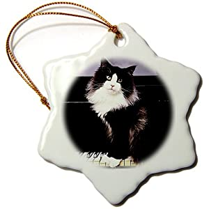 orn_575_1 Cats - Tuxedo Cat - Ornaments - 3 inch Snowflake Porcelain Ornament