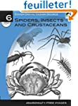 Spiders, Insects and Crustaceans: Gre...