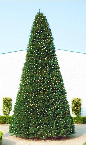 40' Giant Pre-Lit Everest Fir Commercial Christmas Tree