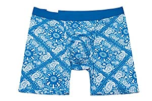 MyPakage Weekday Boxer Brief - Paisley Blue - XL (36-38)