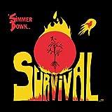 Simmer Down [Vinyl]