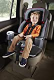 Graco-Nautilus-65-3-in-1-Harness-Booster-Sylvia