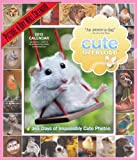 Cute Overload 2013 Calendar: 365 Days of Impossibly Cute Photos (Picture a Day Wall Calendar)