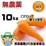 【長崎県】無農薬にんじん10kg規格外品【農園直送】