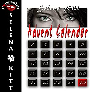 Advent Calendar Audiobook