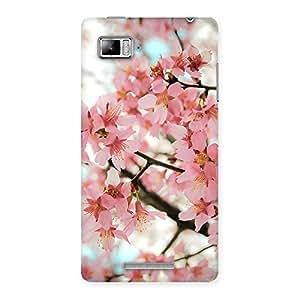 Special Cherry Blossoms Multicolor Back Case Cover for Lenovo Vibe Z K910