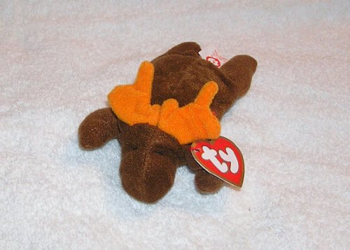 Chocolate the Moose Teenie Beanie Baby