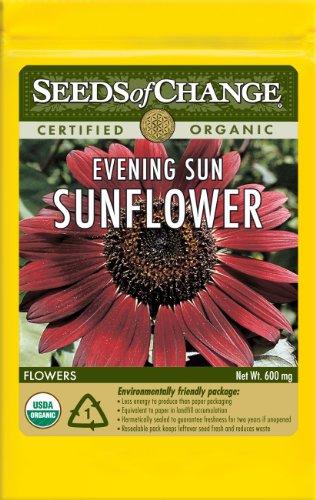 Seeds of Change S11010 Certified Organic Evening Sun Sunflower
