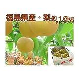 【ジャンボ秋峰梨】福島県産 かやば 梨 (約1.6kg箱約3~4玉入) 1玉450g以上の大きな梨 ランキングお取り寄せ