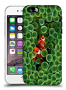 Snoogg Orange Fish Designer Protective Back Case Cover For IPHONE 6 PLUS