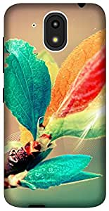 The Racoon Lean blooming branch hard plastic printed back case for HTC Desire 526G Plus