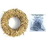 "Sphagnum Moss Wreath - 9"" living wreath form"