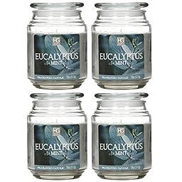Bulk Buy, Hosley\'s Set of 4 Eucalyptus Mint Jar Candles, 18oz Each. Ideal votive GIFT for party favor, weddings, Spa, Reiki, Meditation, Bathroom settings