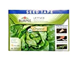 Burpee 60345 Certified Organic Seed Tape Lettuce Buttercrunch 22.5 Ft 240 Seeds