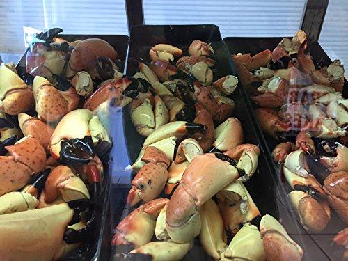 Florida Stone Crab Claws Large 10 LBs Florida wild caught