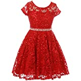 Big Girl Cap Sleeve Floral Lace Glitter Pearl Holiday Party Flower Girl Dress Red 10 JKS 2102