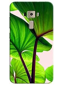 Omnam Tree Green Leaves Closeup Effect Printed Designer Back Cover Case For Asus Zenfone 3 ZE552KL