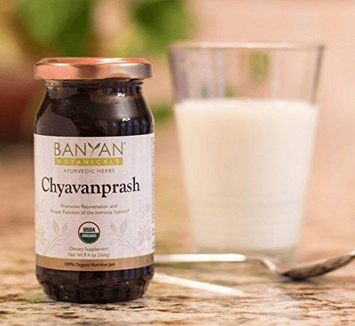 Banyan-Botanicals-Organic-Chyavanprash-Chyawanprash-Sustainably-Sourced-Ayurvedic-Rejuvenative