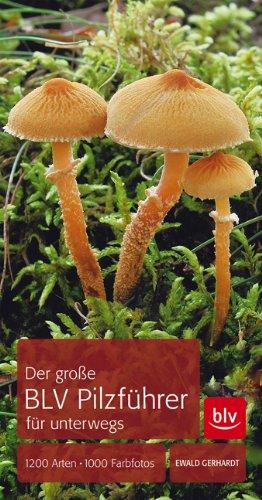 Pilze bestimmen - der große BLV-Pilzführer