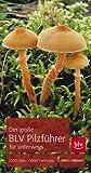 Der große BLV Pilzführer für unterwegs: 1200 Arten · 1000 Farbfotos