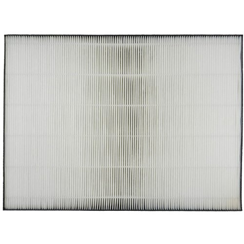 Sharp True HEPA Replacement  Filter For FP-A80UW (Sharp Hepa Filter compare prices)