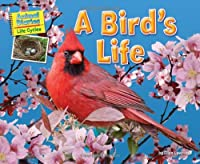 A Birds Life (Animal Diaries Life Cycles)