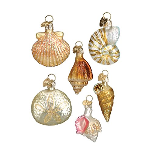 old-world-christmas-assorted-sea-shell-set-glass-blown-ornament