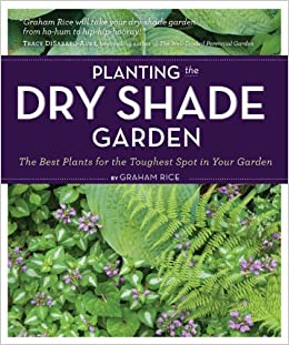 Dry Shade Garden: The Best Plants for the Toughest Spot in Your Garden