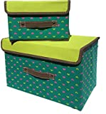 Izzy & Roo Lidded Heart Storage Boxes - Set/2 (Teal/Lime)