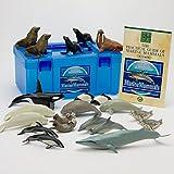 立体図鑑リアルフィギュアボックス マリンママル (海洋性哺乳類、鯨・海豚・海獣・海牛)21頭