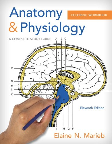 Anatomy and Physiology Coloring Workbook: A Complete Study Guide ...