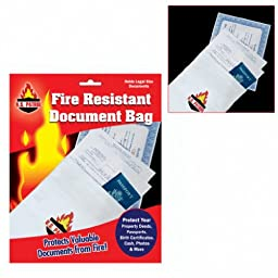 Fire Resistant Document Bag - 9 inch by 14 inch