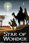 Star of Wonder Garden Flag Religious Christmas Camel Wisemen Primitive 12