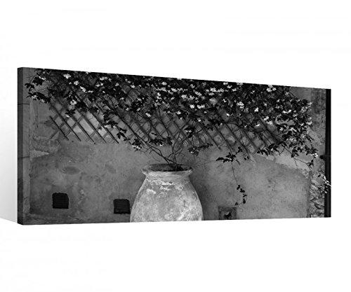 Leinwand 1 Tlg Vase schwarz weiß Krug Blume Toskana Pflanze Bild Wandbild 9C303 Holz - fertig gerahmt - direkt vom Hersteller, 1 Tlg BxH:40x20cm