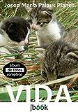 Hogar Manualidades Y Estilos De Vida Best Deals - VIDA [COMPLETO] (Portuguese Edition)